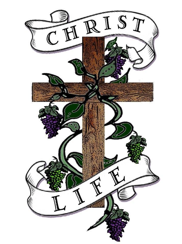 logo for Lakes Region Vineyard Church