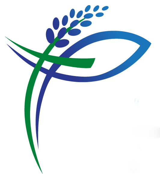 logo for First Baptist Church Chappell Hill