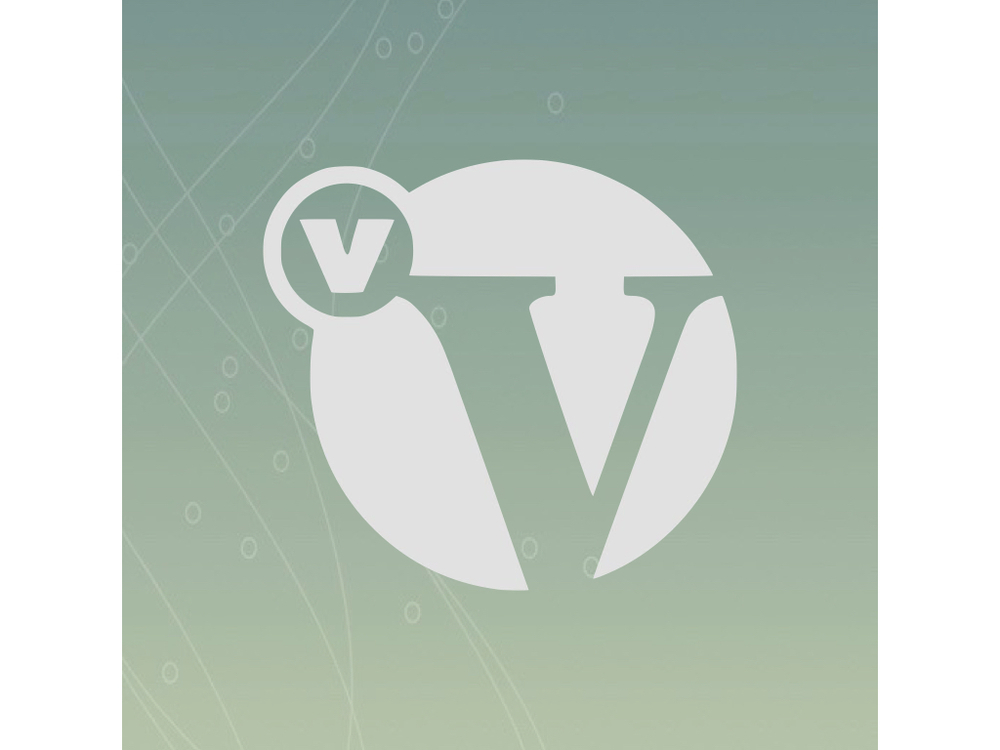 logo for Ventura Vineyard