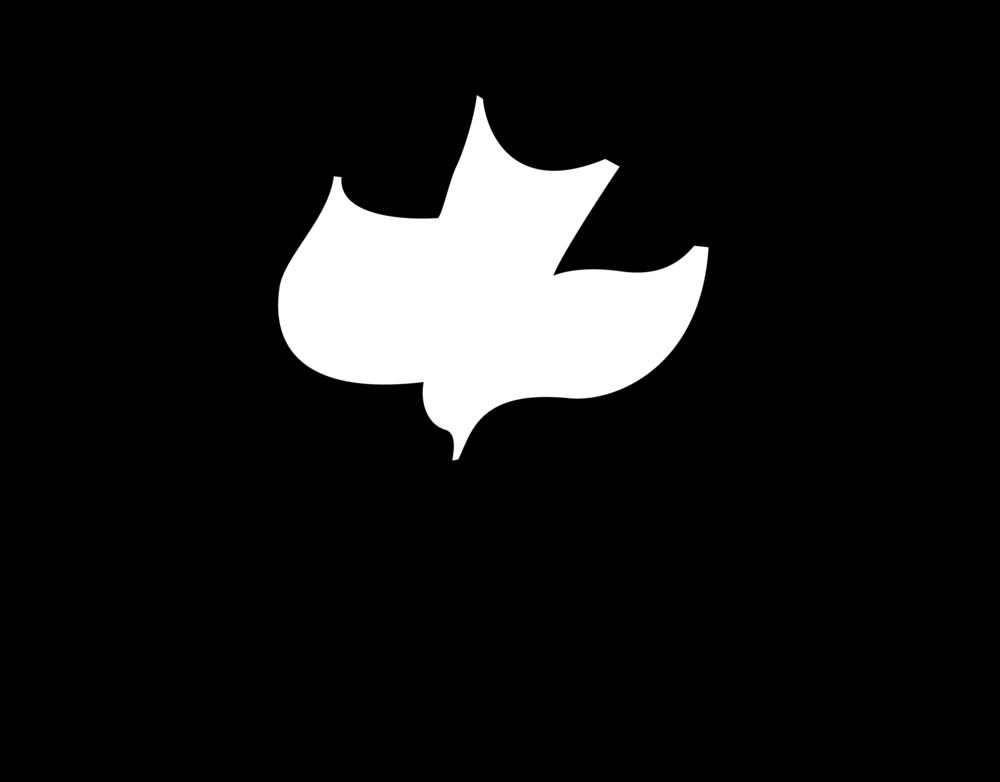 logo for Calvary Chapel McMinnville