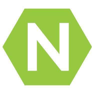logo for The Net Church