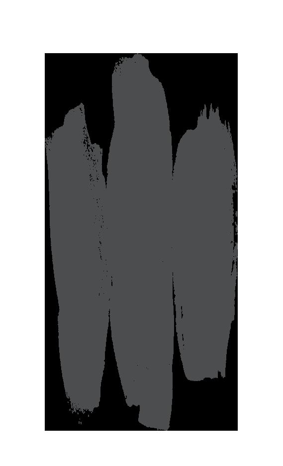 logo for The Sacred Grace